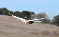 """""""หุ่นยนต์นกพิราบ"""" สามารถขยับปีกบินฉวัดเฉวียนไปมาได้ราวกับมีชีวิตจริง"""