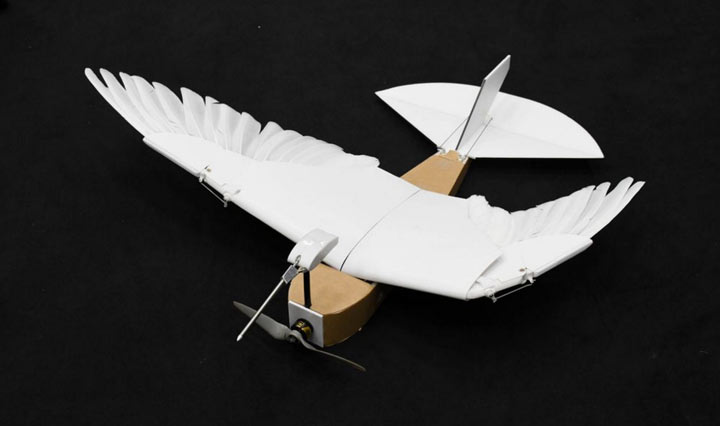 pigeonbot-5