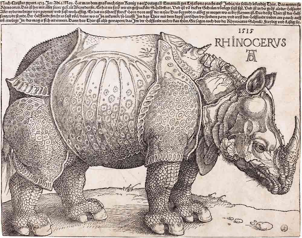 albrecht-durer-woodcuts-and-engravings-07