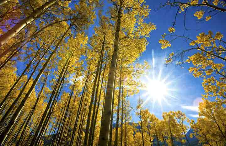 blue-autumn-sky-2