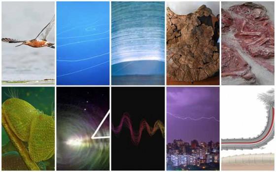 10 สถิติทางวิทยาศาสตร์อันน่าทึ่งและน่าสนใจที่ถูกทำลายไปในปี 2020