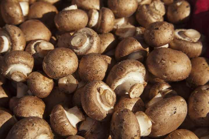 7-surprising-health-benefits-of-mushrooms-05