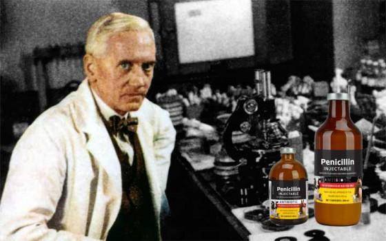 """อเล็กซานเดอร์ เฟลมมิง นักชีววิทยาวีรบุรุษของโลกผู้ค้นพบ """"เพนนิซิลลิน"""""""