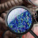 พบไวรัสกว่า 140,000 สายพันธุ์ในลำไส้ของมนุษย์ครึ่งหนึ่งไม่เคยรู้จักมาก่อน