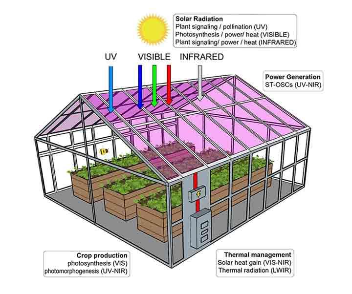 semi-transparent-solar-cells-2