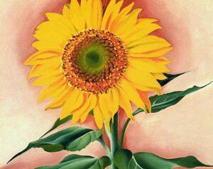georgia-o'keeffe-flower-paintings-06