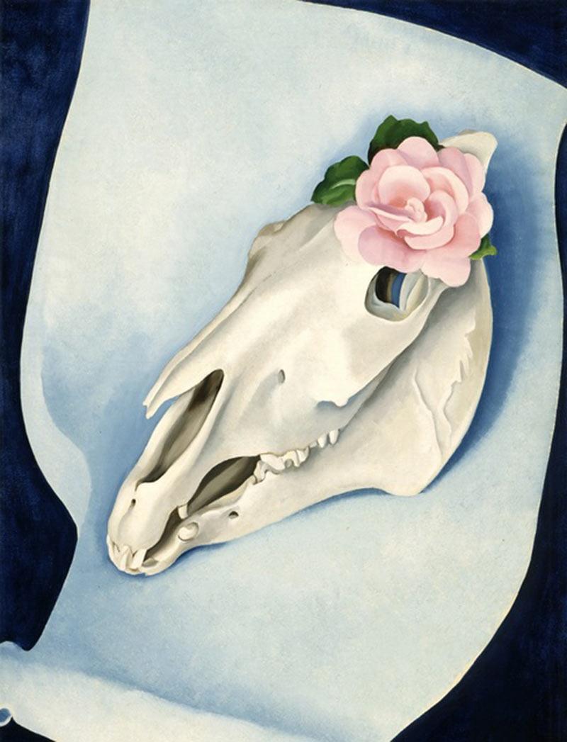 georgia-okeeffe-skull-shell-still-life-09